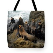 Sea Lion Chorus Tote Bag