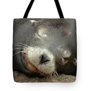 Sea Lion In San Francisco Tote Bag