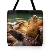 Sea Lion Pup Tote Bag