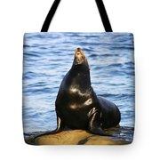 Sea Lion Sing Tote Bag