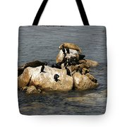 Sea Lions And Birds Tote Bag