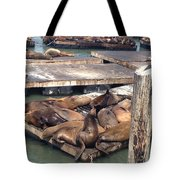 Sea Lions And Seagull Tote Bag