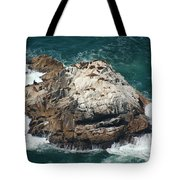 Sea Lions Sunning Tote Bag by Suzanne Gaff