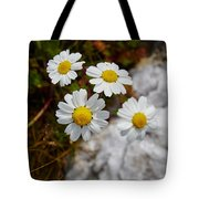Sea Mayweed Tote Bag