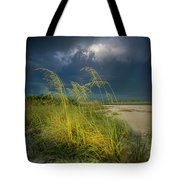 Sea Oats In The Storm Tote Bag