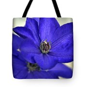 Sea Of Blue Tote Bag