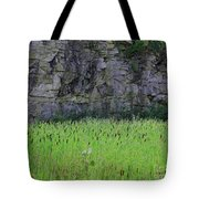 Sea Of Cattails Tote Bag