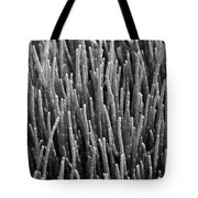 Sea Pickle Tote Bag