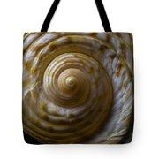 Sea Shell Beauty Tote Bag