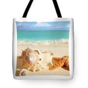 Sea Shell Seashell Clam Beach Decorative Square Zippered Throw Pillow Tote Bag