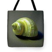 Sea Shell Turbo Marmoratus Tote Bag