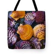 Sea Shells And Sea Glass Tote Bag