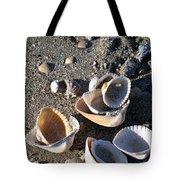 Sea Shells At Folly Beach In Charleston Sc Tote Bag
