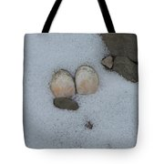Sea Shells In Snow Tote Bag