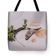 Sea Shells With Drift Wood And Small Plants Tote Bag