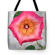 Sea Star Flower Tote Bag