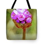 Sea Thrift Closeup Near Lighthouse In Point Reyes National Seashore, California  Tote Bag