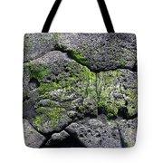 Sea Turtle Formation Tote Bag