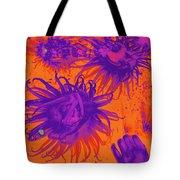 Sea Urchin 14 Tote Bag