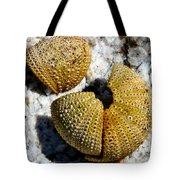 Sea Urchin Puzzle Pieces Tote Bag