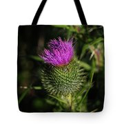 Seacoast Wildflower I Tote Bag