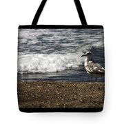 Seagull At The Beach Tote Bag