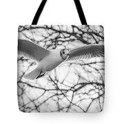 Seagull Fly By Trees Tote Bag