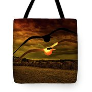 Seagull Flying In Action Tote Bag by Fernando Cruz