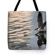 Seagull Fun Tote Bag