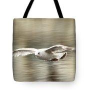 Seagull Glide Tote Bag