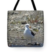 Seagull In Patagonia Tote Bag