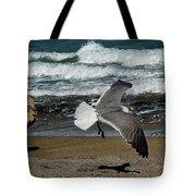 Seagull Landing Hutchinson Island, Fl Tote Bag
