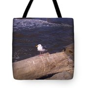 King Of The Seagulls Tote Bag