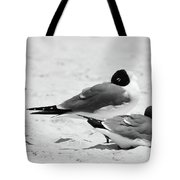 Seagull Nap Time Tote Bag