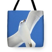 Seagull On Folly Tote Bag