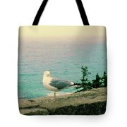 Seagull On Stone Wall Tote Bag