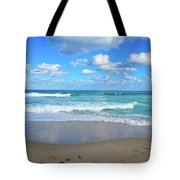 Seagull On The Atlantic Shore Tote Bag