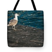 Seagull On The Pier Tote Bag