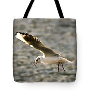 Seagull Over Water Tote Bag