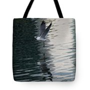 Seagull Reflection Over Blue Bay Tote Bag