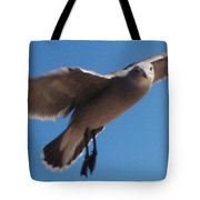 Seagull Sees Me Tote Bag