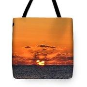 Seagull Sunrise Tote Bag