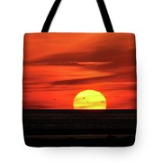 Seagull Sunset Tote Bag