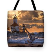 Seagull Takeoff - Tiscornia Beach  Tote Bag