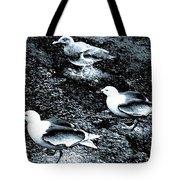 Seagull Trio Tote Bag
