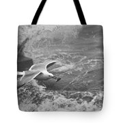 Seagull With Bread Tote Bag