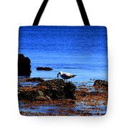 Seagull With Crab Tote Bag