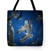 Seagulls Above Tote Bag