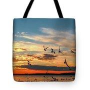Seagulls At Sunset Tote Bag