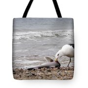 Seagulls Catch Of The Day Tote Bag